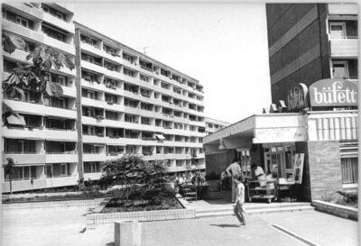06.06.1990: RAF-Terroristin wird festgenommen